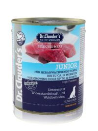 Dr.cluders Junior